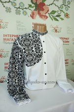 Men`s embroidered shirts